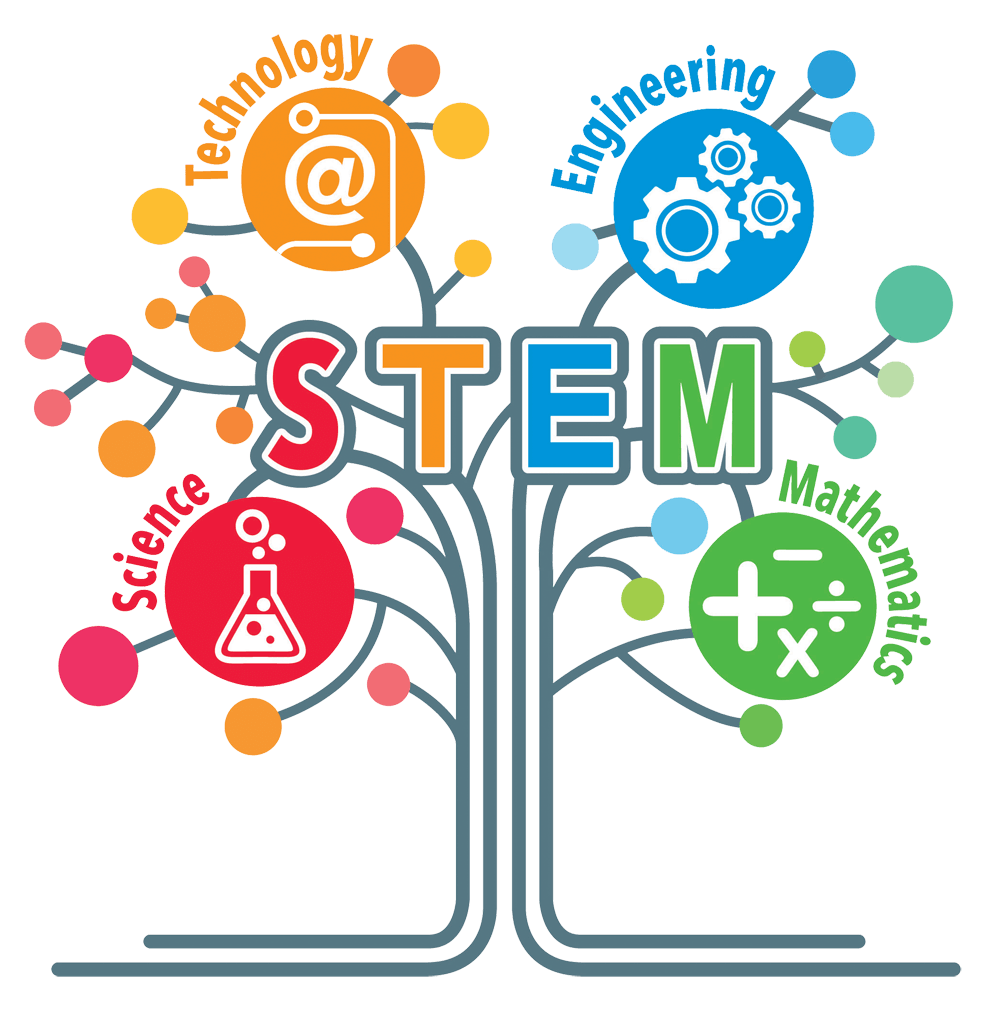 Year-1-Stem.png?mtime=20210604122332#asset:24967