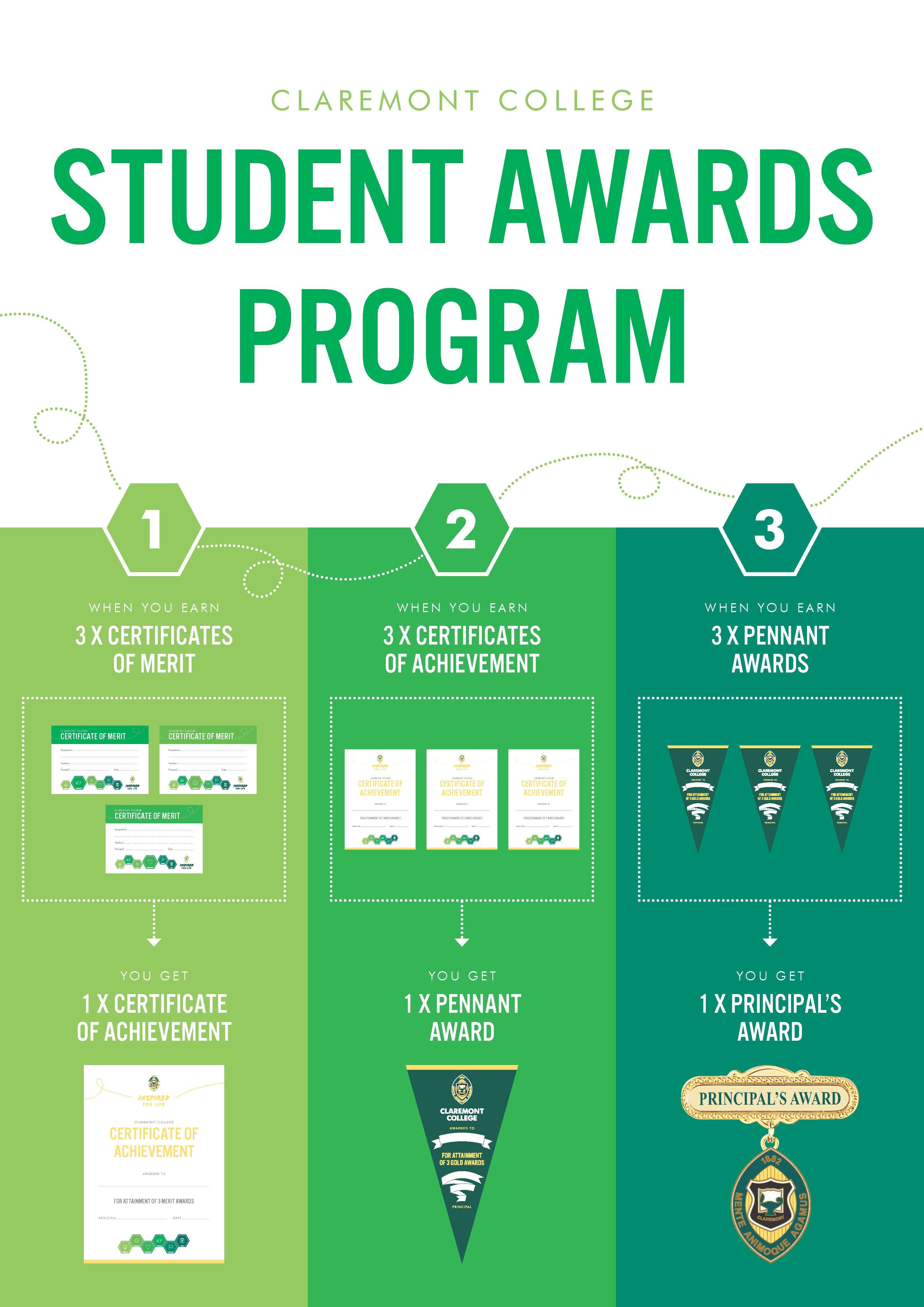 Merit Award System Poster