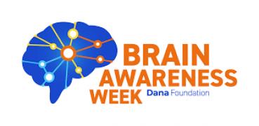 BAW Dana foundation