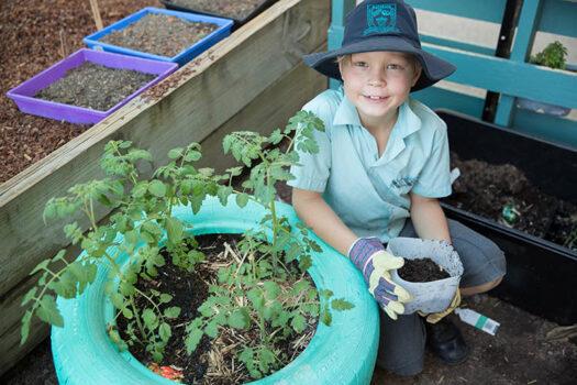 Primary Boy Gardening