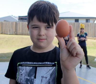 Egg Force 4