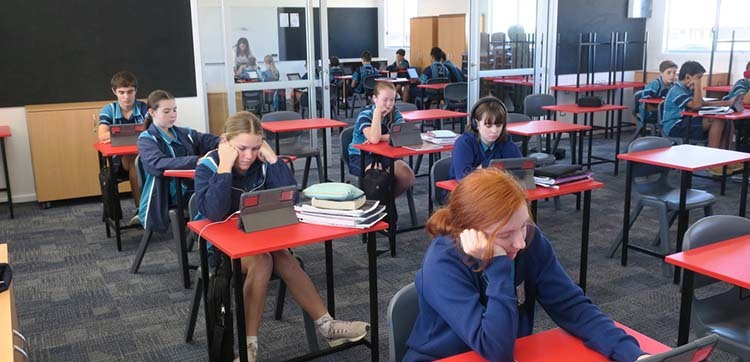 Year 8s dual learning