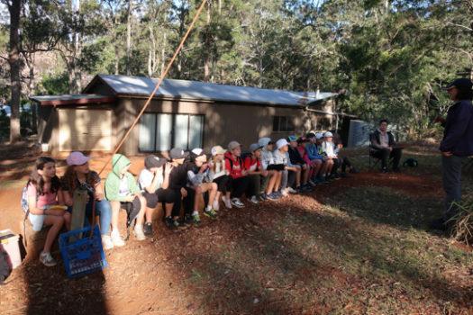 Yr4 Camp 10