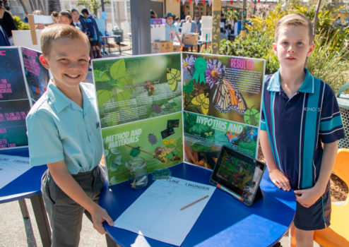 Year 5 Science Expo 31