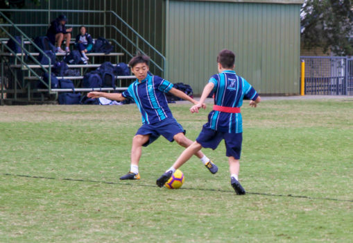 Aps Sports Training 2020 10