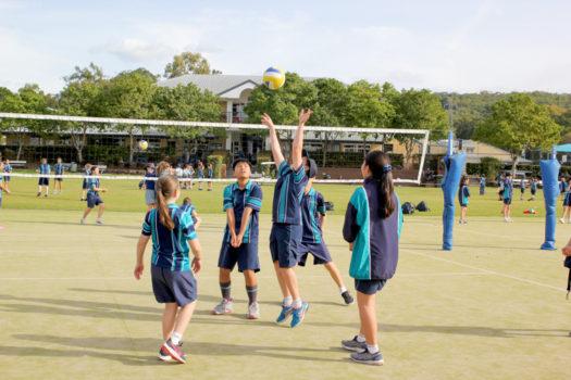 Aps Sports Training 2020 3