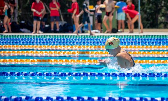 Primary Swim Carnival Social 31