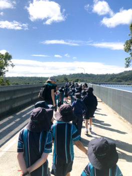 Yr2 Hinze Dam 3
