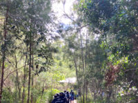 Yr2 Hinze Dam 8
