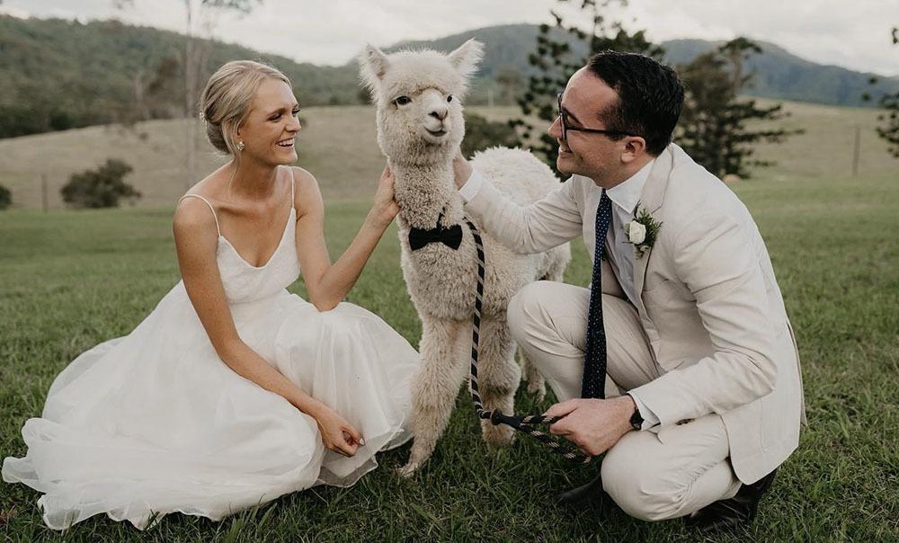 Courtney Beveridge wedding