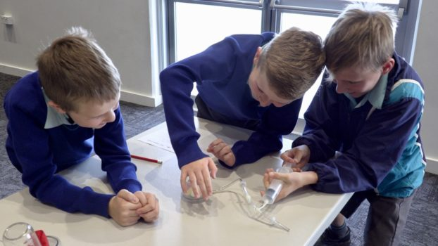 Year 5 Science 6