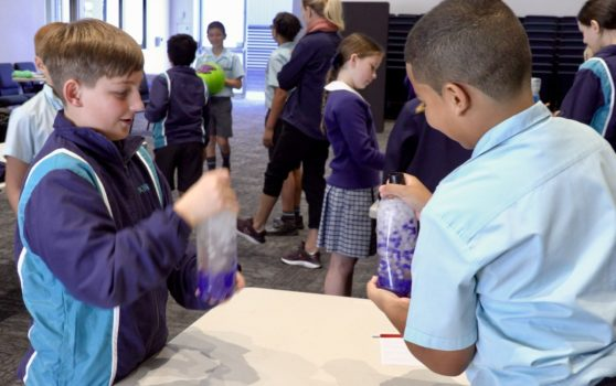 Year 5 Science 7