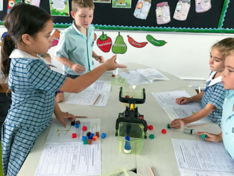 Year 2 Measure Mass Term 1 2