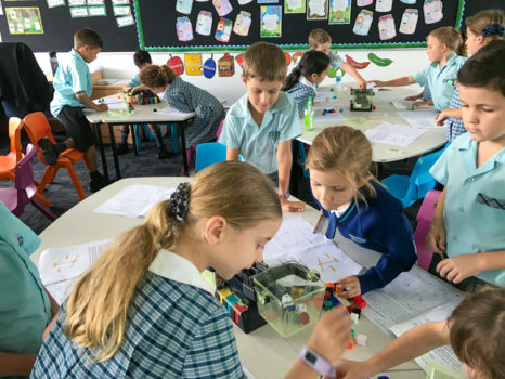 Year 2 Measure Mass Term 1 3