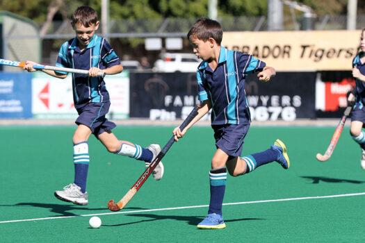 Kings-hockey