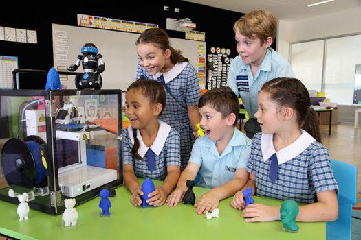 Pimpama-primary-3D-printer