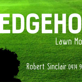Hedgehog Lawn Mowing