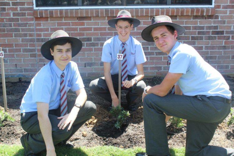 2016-Year-12-Tree-Planting-1