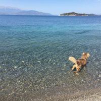 Greece-Tour-2016-9