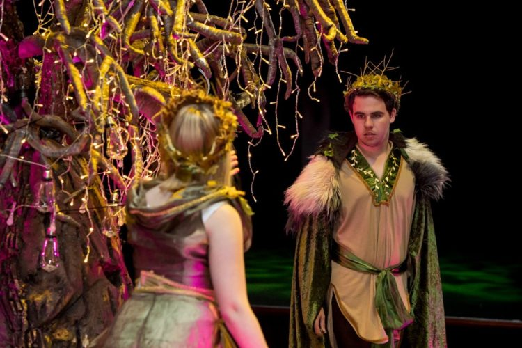 A Midsummer Nights Dream 17 Medium