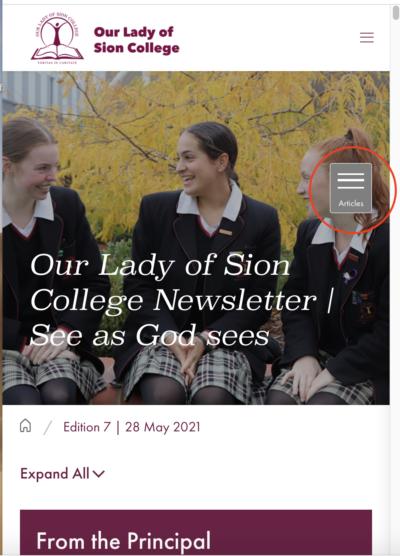 Newsletter screenshot articles menu