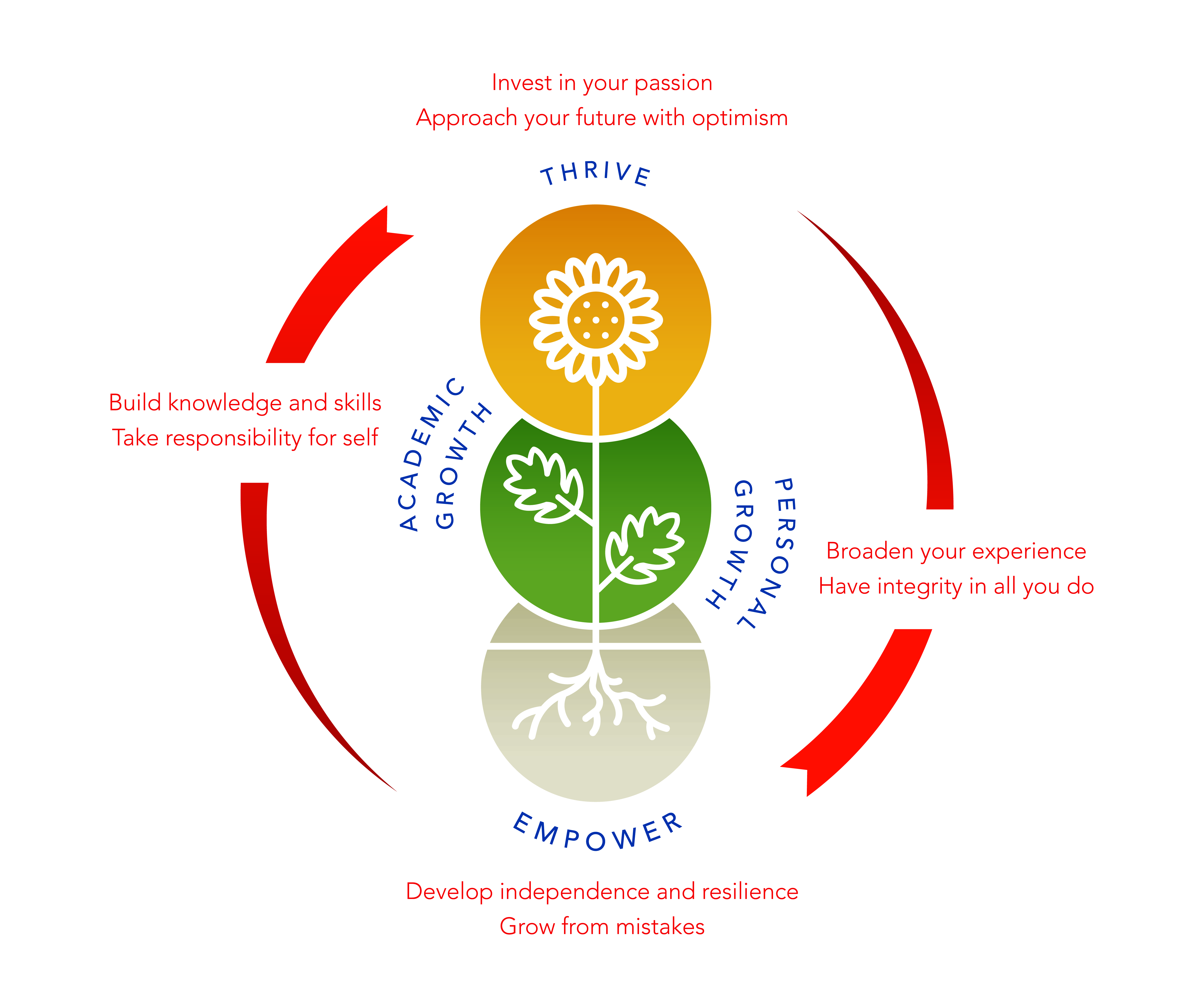 Strategic-Plan-values-diagram.jpg?mtime=20190410114950#asset:8668