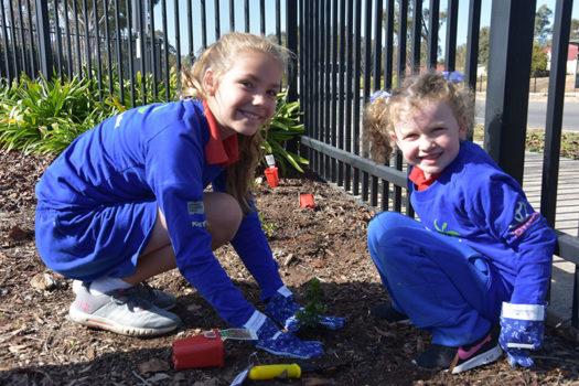 Schools Tree Day Foundation 12