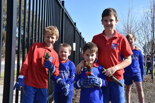 Schools Tree Day Foundation 2
