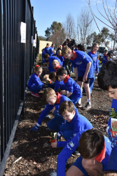 Schools Tree Day Foundation 3