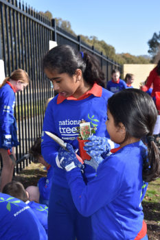 Schools Tree Day Foundation 5