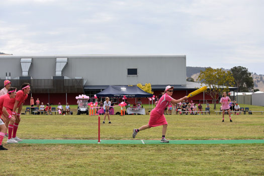 Pink Stumps Day 30