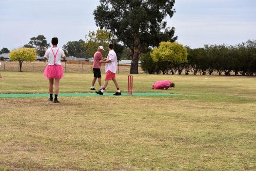 Pink Stumps Day 32