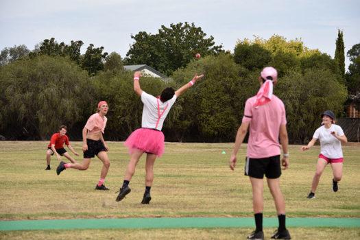 Pink Stumps Day 34