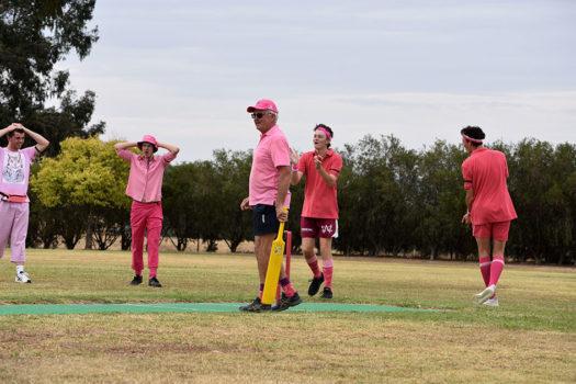 Pink Stumps Day 43