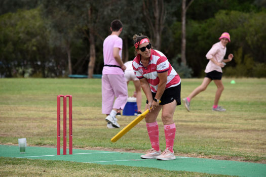Pink Stumps Day 44