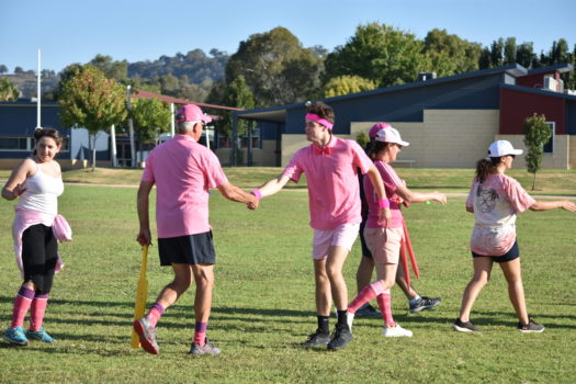 Pink Stumps Day 33