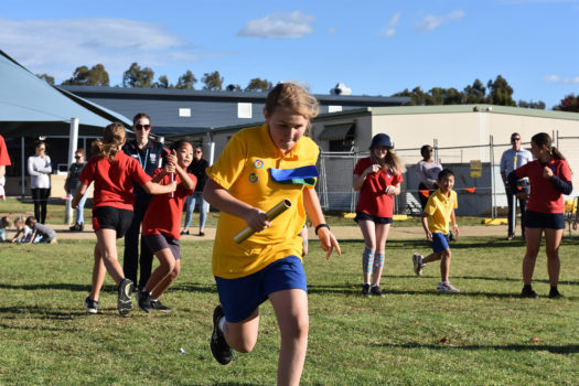03 Primary Athletics Wed Sprints 777