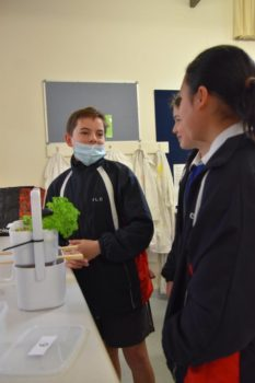 Science Yr 7 Sustainable Showcase 21