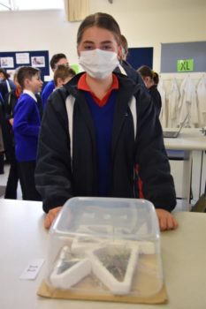 Science Yr 7 Sustainable Showcase 36