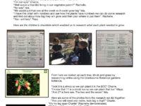 Tree Planting Copy 1